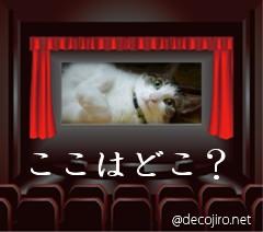 映画館のチェリン