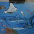 ちゅら海水族館の絵
